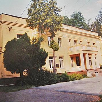 Pałac w Chorzenicach
