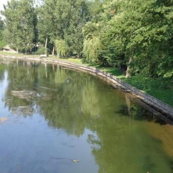 Rzeka Pisa