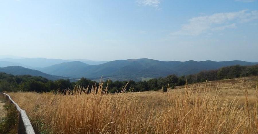 Wycieczka na Tarnicę w Bieszczadach, Lucy i Tom