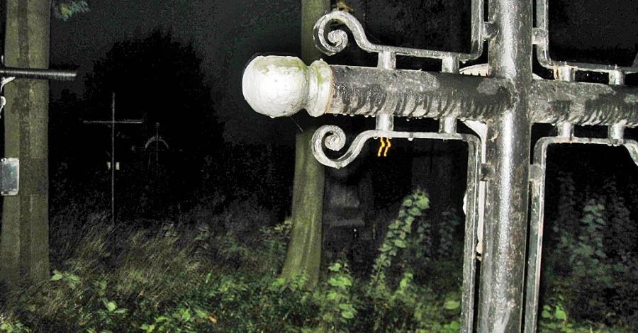 Cmentarz choleryczny w Skale - zdjęcie