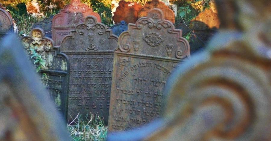 Cmentarz żydowski w Krzepicach - zdjęcie