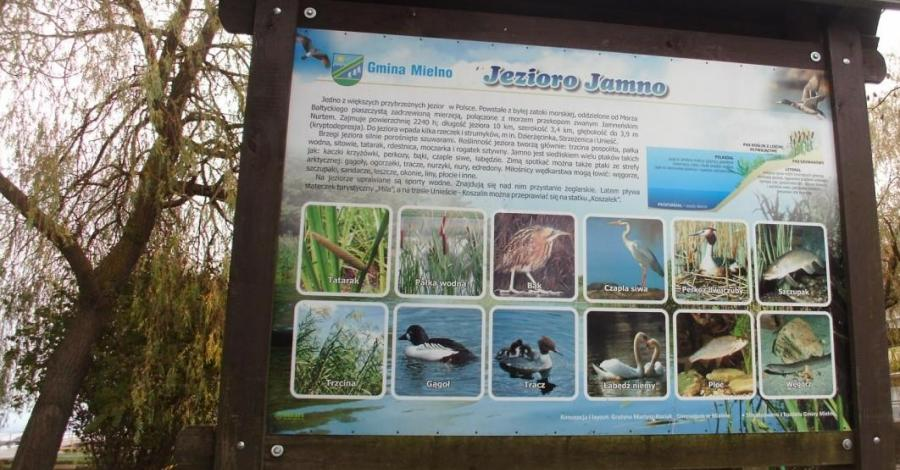 Deptak nad Jeziorem Jamno w Mielnie - zdjęcie