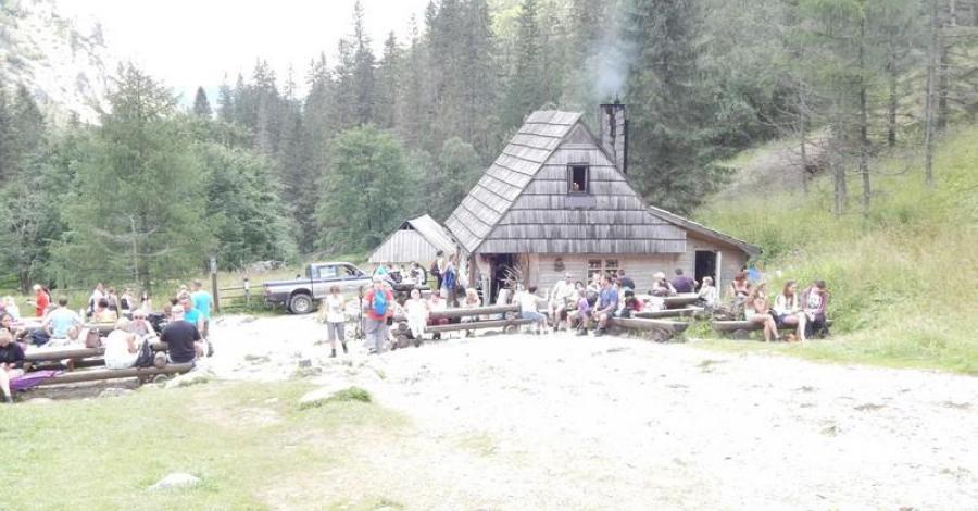 Herbaciarnia Parzenica w Dolinie Strążyskiej - zdjęcie