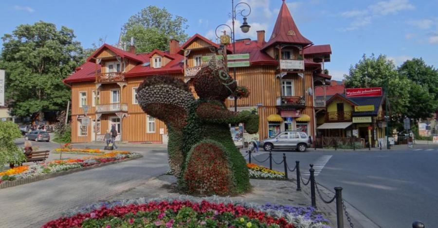 Kwiatowe rzeźby w Szczawnicy - zdjęcie