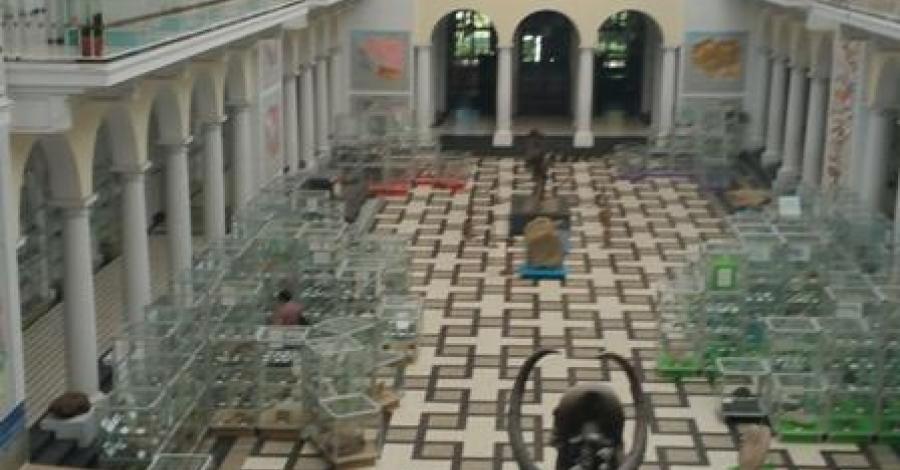 Muzeum Geologiczne w Warszawie - zdjęcie