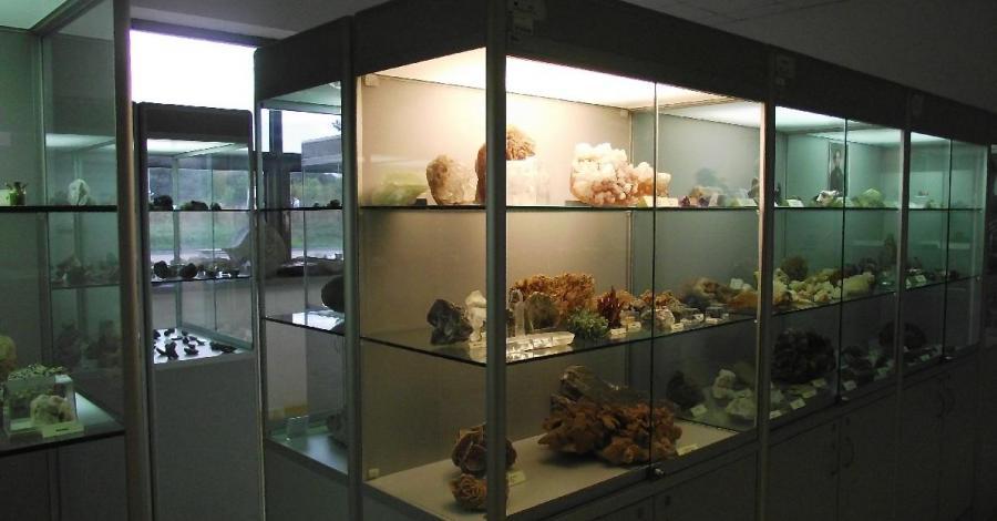 Muzeum Ziemi w Poznaniu, Barbara Michalewska