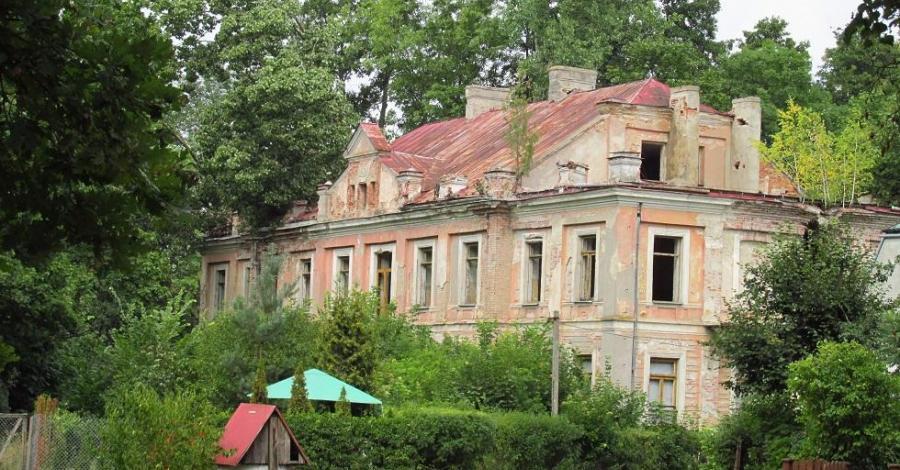 Pałac w Nowym Duninowie - zdjęcie