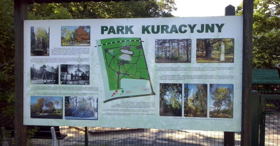 Park Kuracyjny w Ustroniu, mokunka