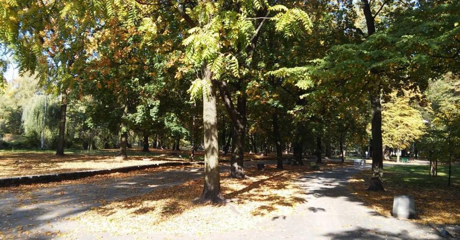 Park Żeromskiego w Sosnowcu - zdjęcie