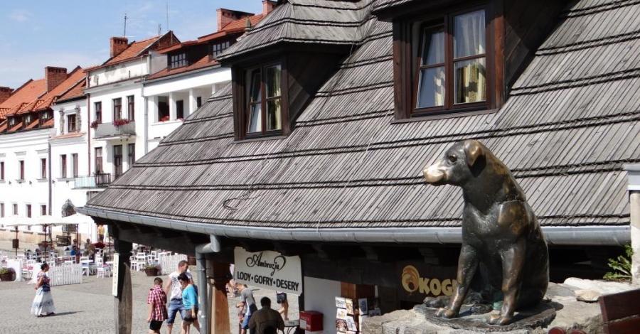 Pomnik psa Werniksa w Kazimierzu Dolnym - zdjęcie