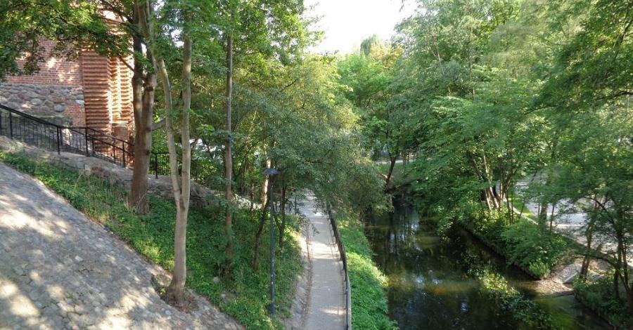 Rzeka Łyna - zdjęcie