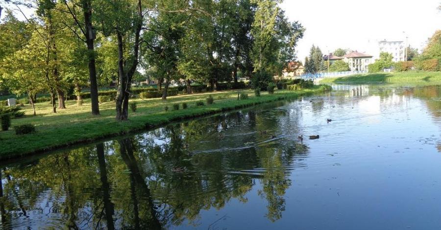 Rzeka Węgierka - zdjęcie