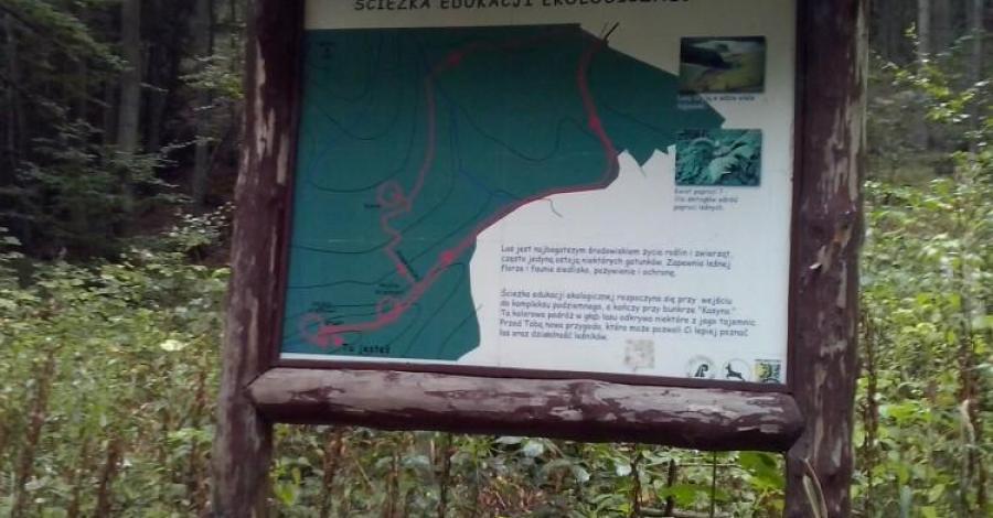Ścieżka Edukacji Ekologicznej Osówka - zdjęcie
