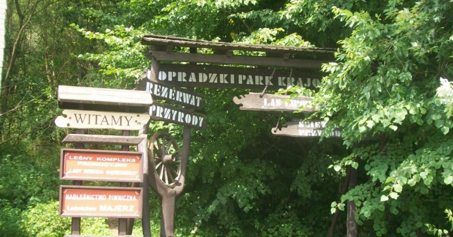 Ścieżka przyrodnicza w Popradzkim Parku Krajobrazowym - zdjęcie