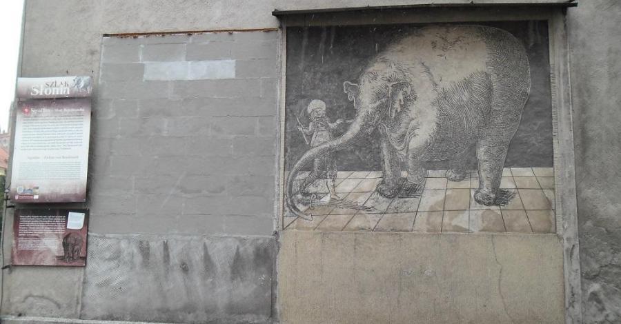 Sgraffito Słoń w Trzebiatowie - zdjęcie