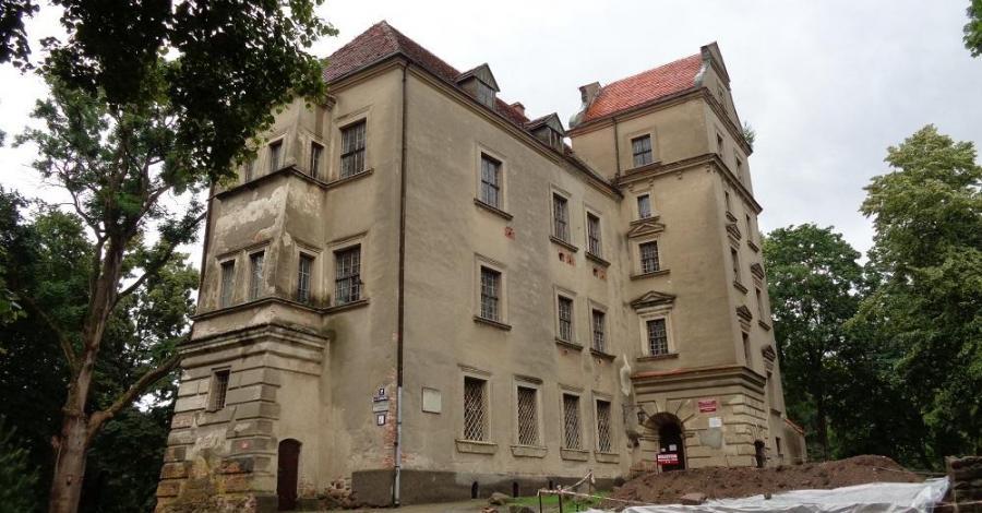 Stary Zamek w Płotach - zdjęcie