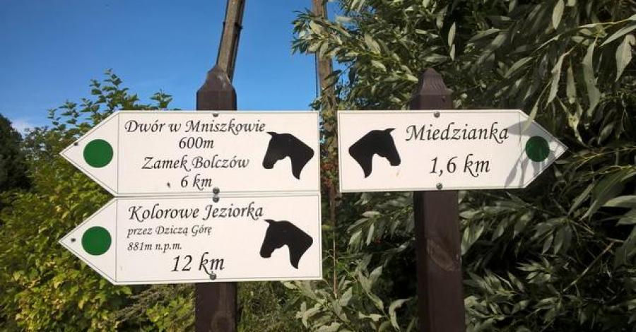 Szlak Miedzianka-Mniszków, Danuta