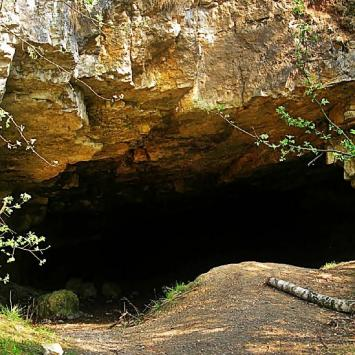 Rezerwat Szachownica w Lipiu