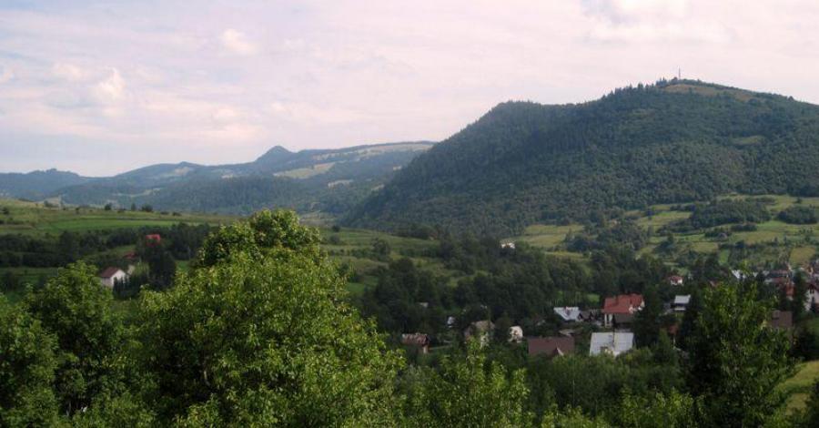 Jarmuta w Pieninach - zdjęcie