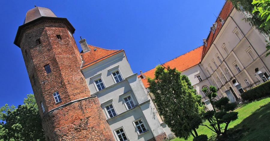 Zamek w Koźminie Wielkopolskim - zdjęcie