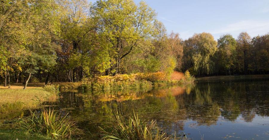Park Górnik w Siemianowicach Śląskich - zdjęcie