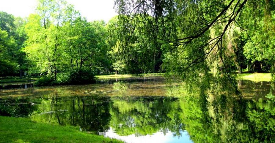 Park Zielona w Dąbrowie Górniczej, Roman Świątkowski