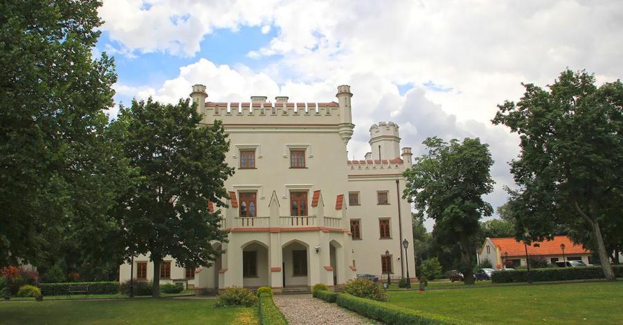 Pałac w Starejwsi - zdjęcie