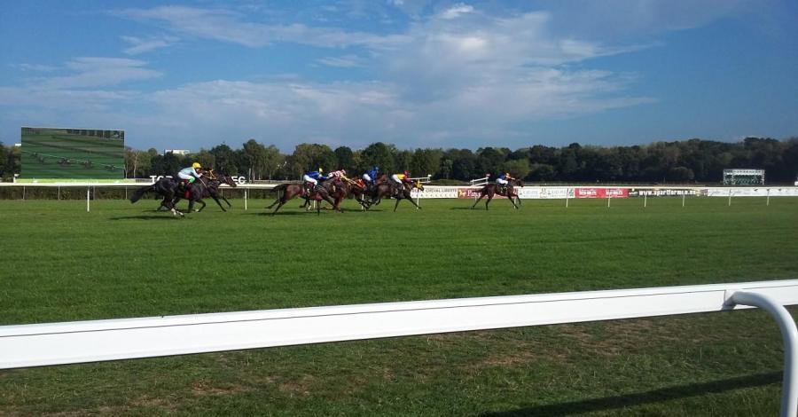 Tor wyścigów konnych na Służewcu - zdjęcie