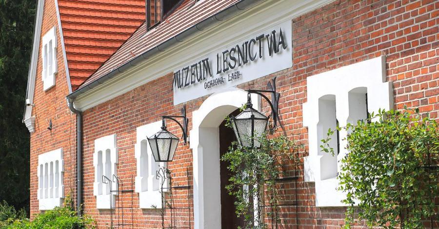 Muzeum Leśnictwa w Gołuchowie - zdjęcie