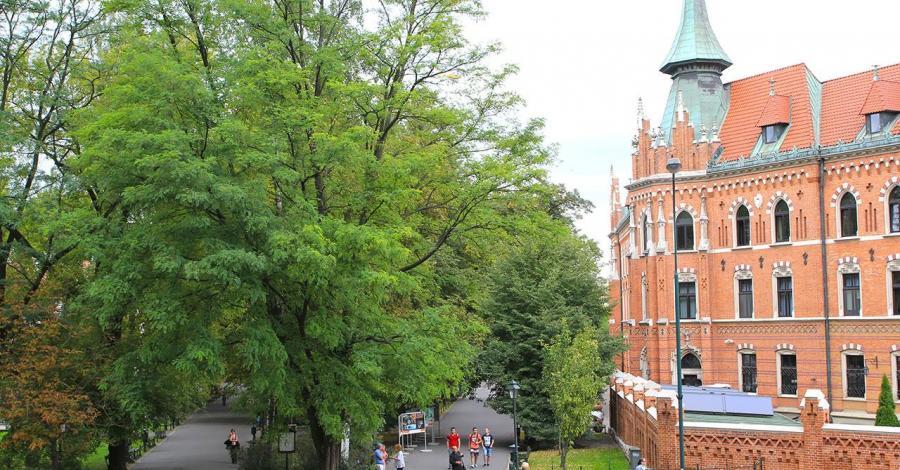 Planty w Krakowie widziane z Wawelu, Anna Piernikarczyk