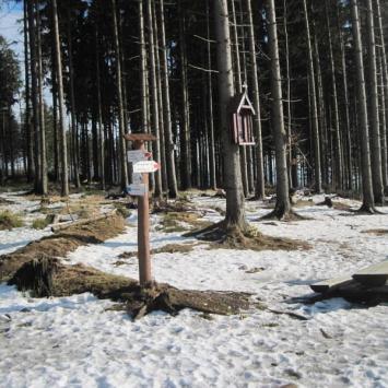 Mraźnica w Beskidzie Śląskim