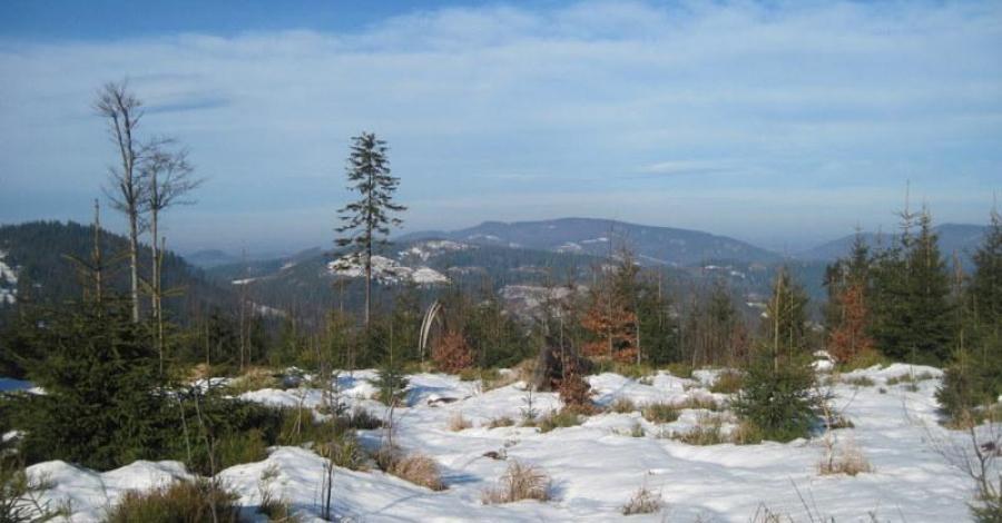 Beskid Śląski: Stożek Wielki 978mnpm (zimą). - zdjęcie