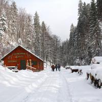 Zimowa Dolina Białej Wisełki