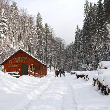 Zimowa Dolina Białej Wisełki, Anna Piernikarczyk