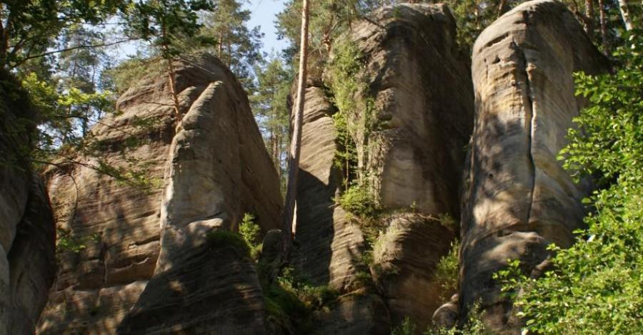 Jedno dniowy wyjazd do skalnego miasta Adrspach w Czechach - zdjęcie