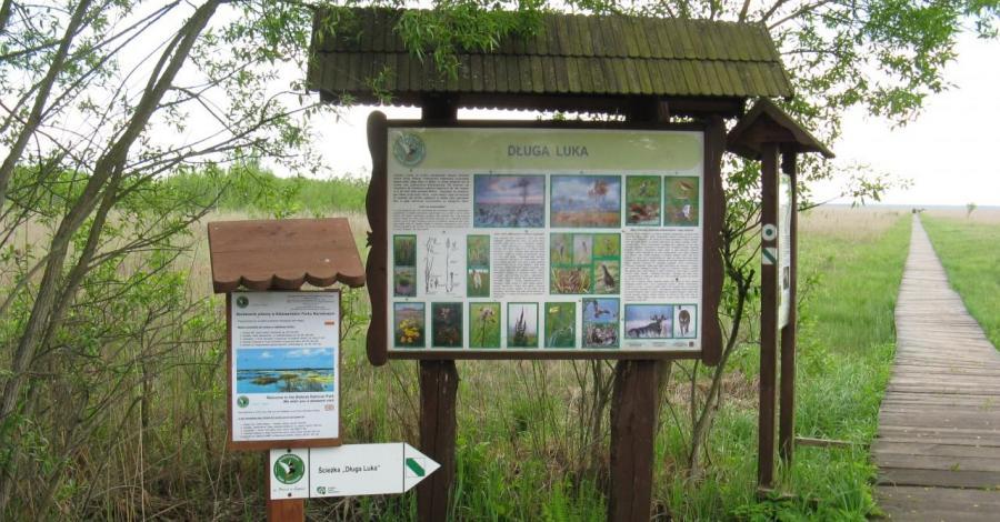 Biebrzański Park Narodowy - Carska Droga - zdjęcie