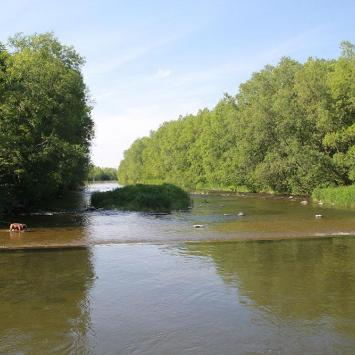 Rzeka Wisła w Ustroniu, Anna Piernikarczyk