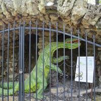 Radzio czyli dinozaur, którego ślady odnajdywano na Księżej Górze