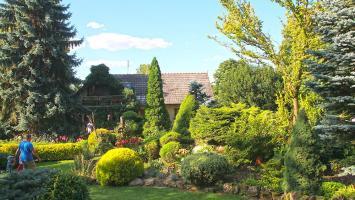 Ogród na Rozstajach - cud w Młodzawach Małych - zdjęcie