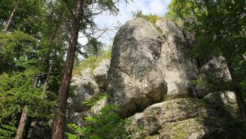 Dolinki Podkrakowskie - Dolinka Brzoskwinki i Dolinka Aleksandrowicka - zdjęcie