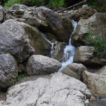 Wąwóz Homole strumień, Jadwiga