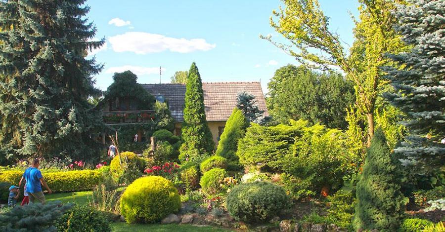Ogród na Rozstajach w Młodzawach Małych - zdjęcie