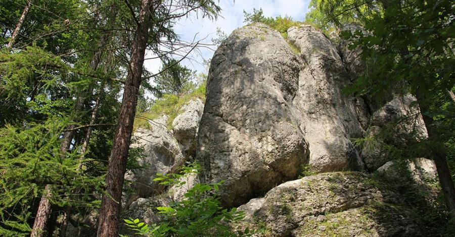Dolina Brzoskwinki - zdjęcie