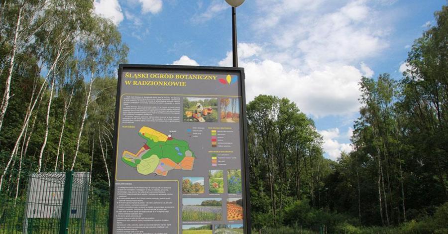 Śląski Ogród Botaniczny w Radzionkowie - zdjęcie