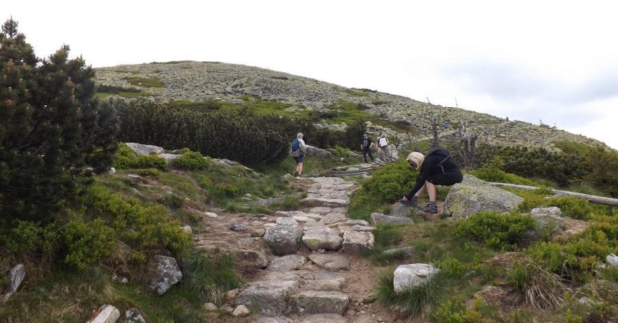 Przełęcz pod Śmielcem - zdjęcie