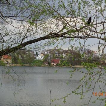 Jezioro Sztumskie w Sztumie