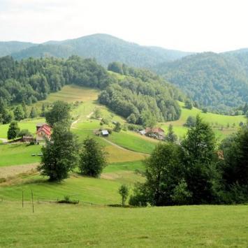 Przełęcz Przysłop w Beskidzie Sądeckim