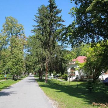 Park Zdrojowy w Solcu Zdroju