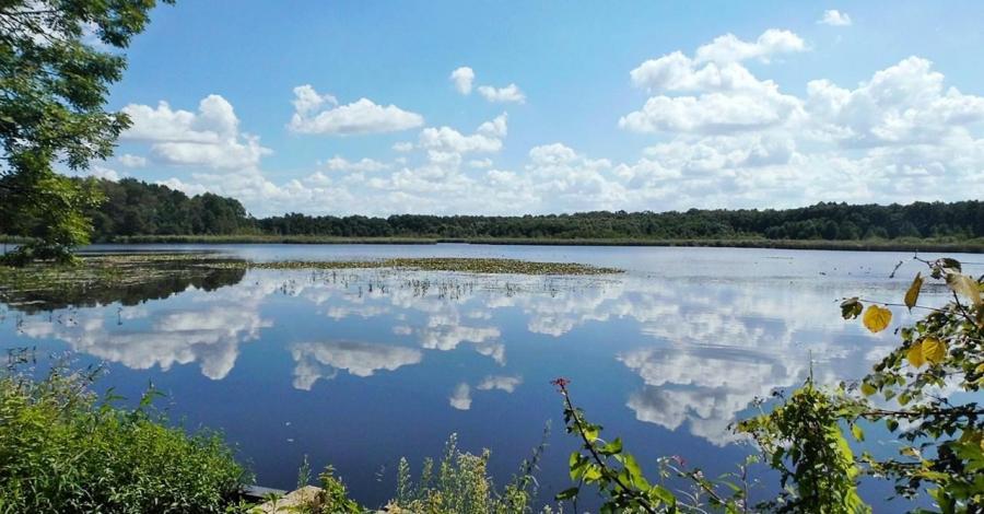 Cysterskie Kompozycje Krajobrazowe Rud Wielkich - zdjęcie
