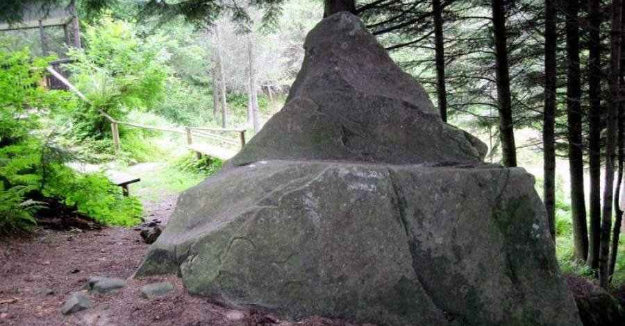 Kamień Św. Kingi w Starym Sączu - zdjęcie